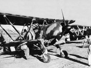 2nd World War Tour Airplane Photo